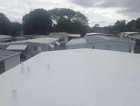 Our Roofs 5